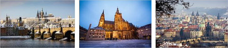 Prague sightseeing tour for accompanying persons (4)